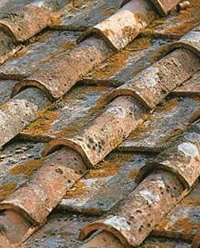 Reclaimed roof and antique tiles